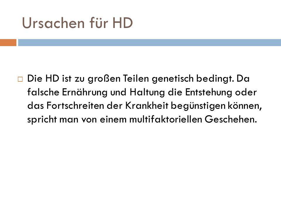 Ursachen für HD