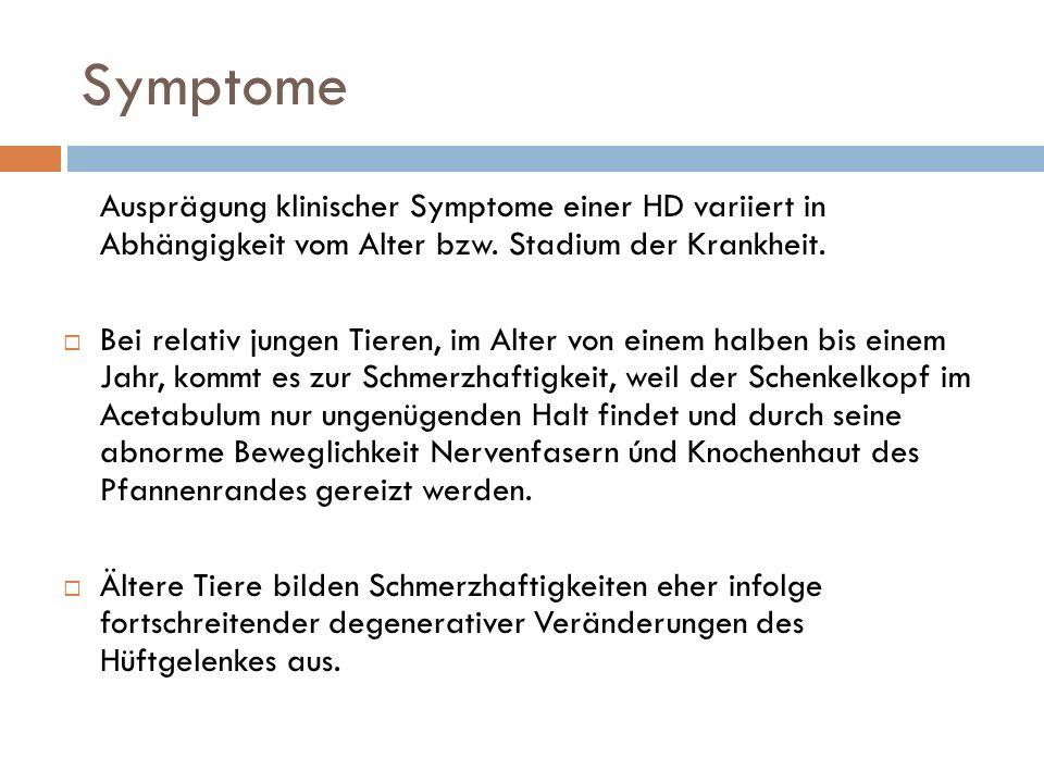 Symptome Ausprägung klinischer Symptome einer HD variiert in Abhängigkeit vom Alter bzw. Stadium der Krankheit.