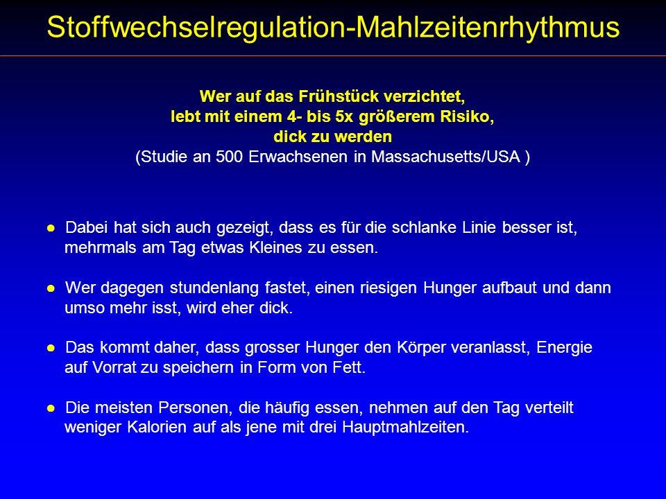Stoffwechselregulation-Mahlzeitenrhythmus
