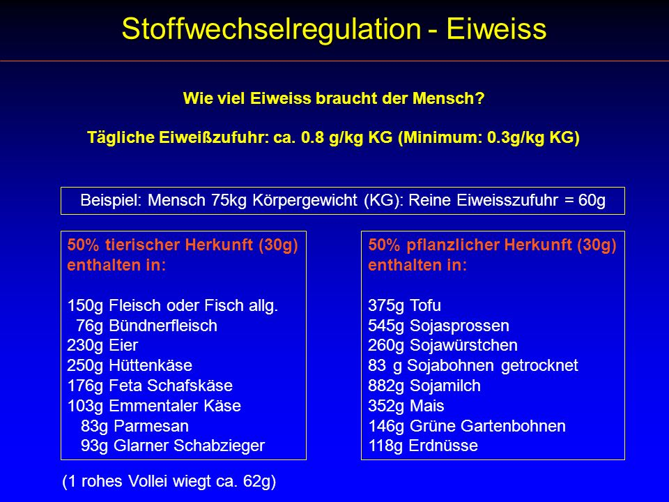Stoffwechselregulation - Eiweiss