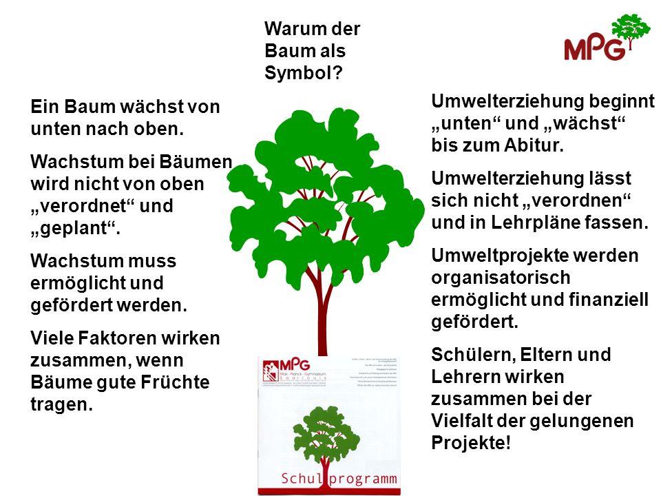 Warum der Baum als Symbol