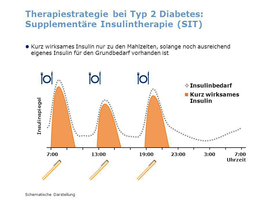 Therapiestrategie bei Typ 2 Diabetes: Supplementäre Insulintherapie (SIT)
