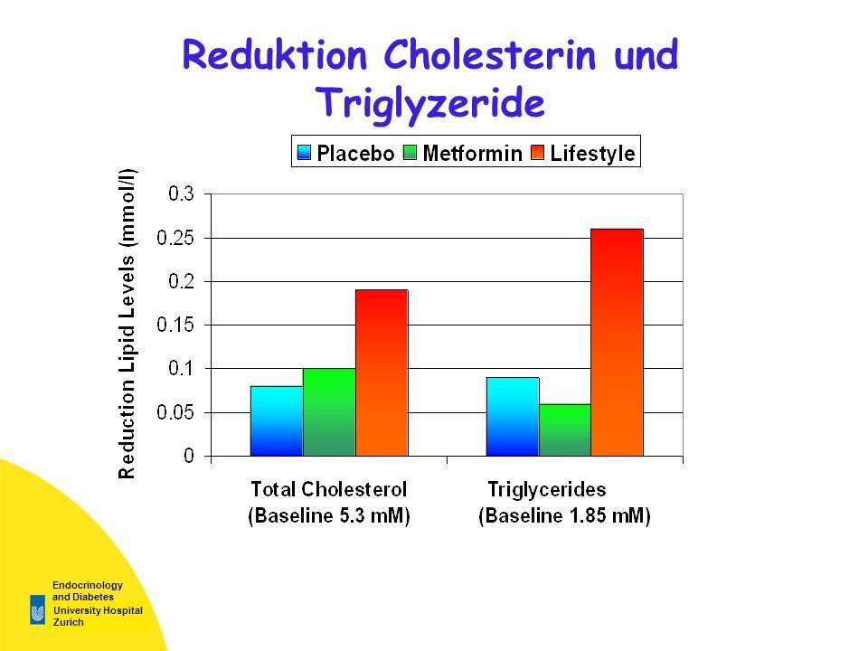 Reduktion Cholesterin und Triglyzeride