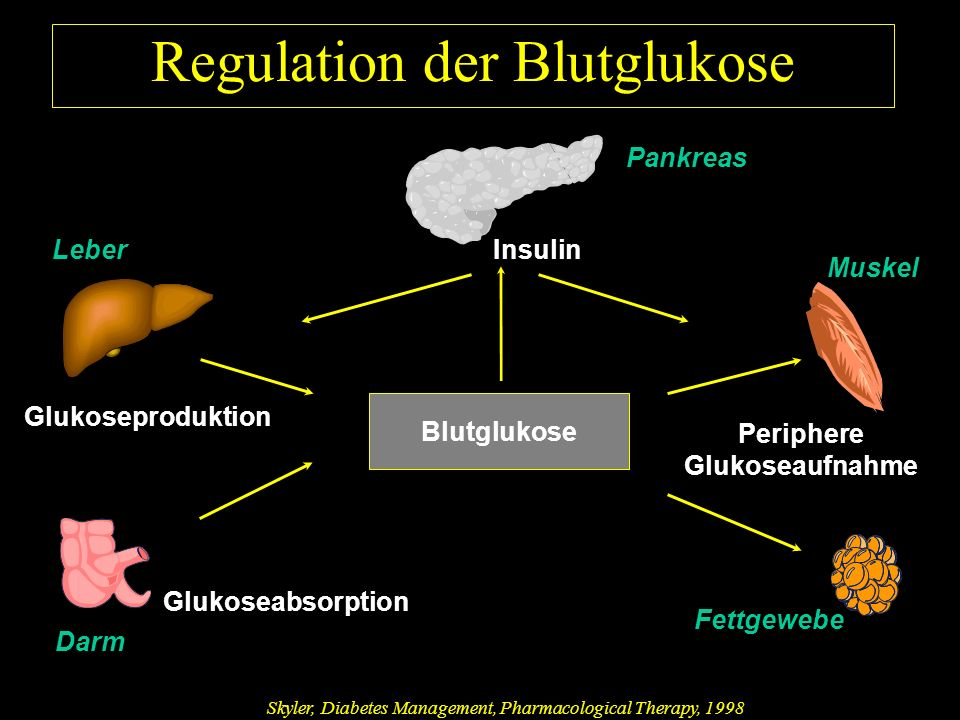 Periphere Glukoseaufnahme