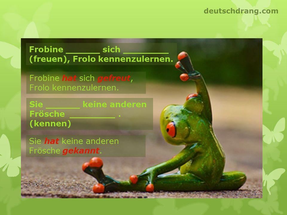 Frobine ______ sich ________ (freuen), Frolo kennenzulernen.