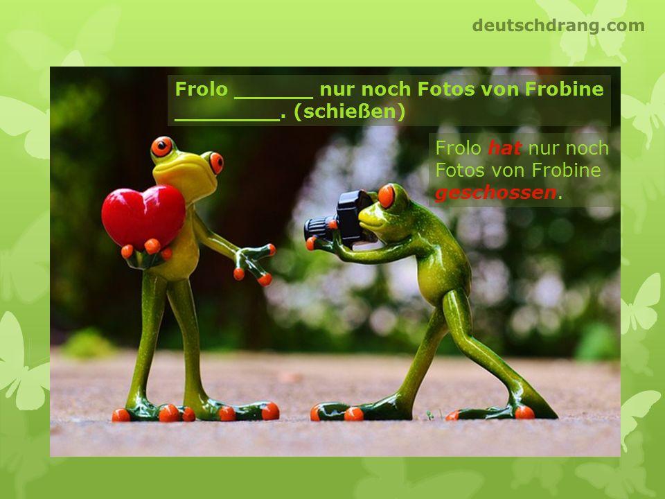 Frolo ______ nur noch Fotos von Frobine ________. (schießen)