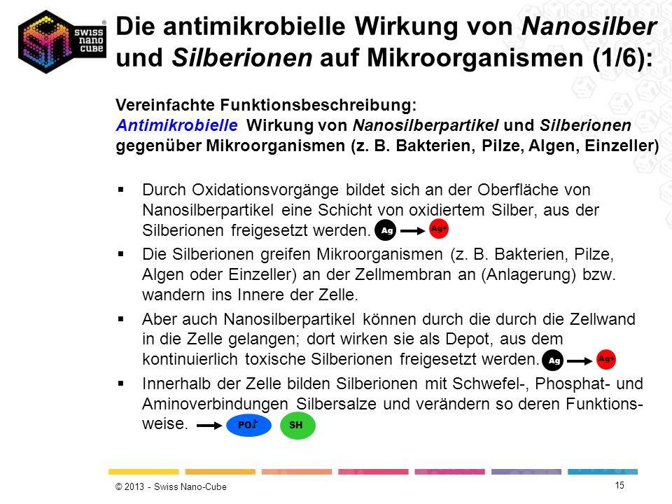 Die antimikrobielle Wirkung von Nanosilber und Silberionen auf Mikroorganismen (1/6):