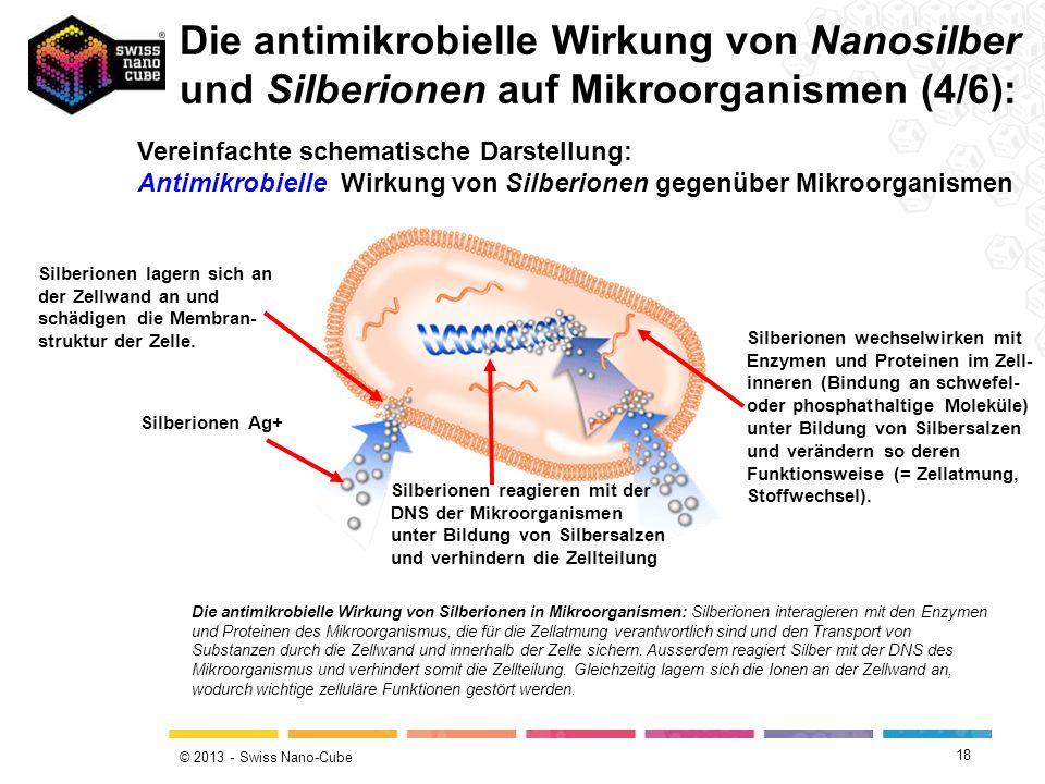Die antimikrobielle Wirkung von Nanosilber und Silberionen auf Mikroorganismen (4/6):