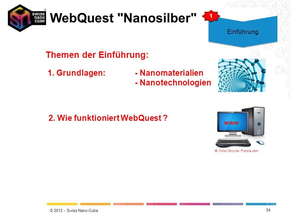 WebQuest Nanosilber Themen der Einführung: