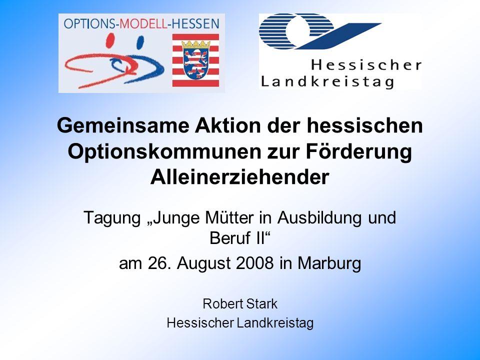 Gemeinsame Aktion der hessischen Optionskommunen zur Förderung Alleinerziehender