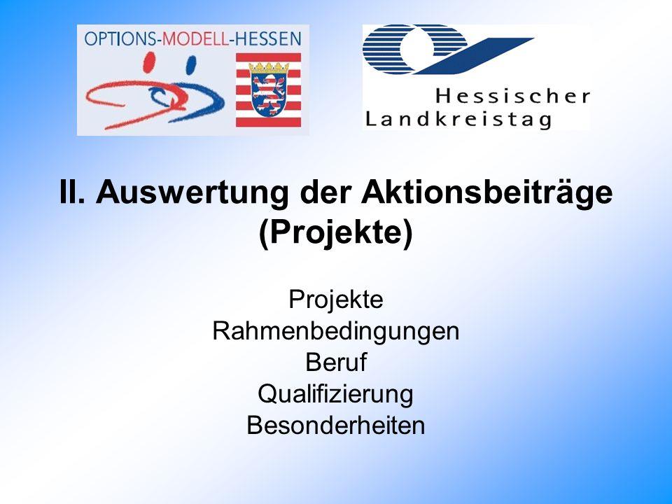 II. Auswertung der Aktionsbeiträge (Projekte)