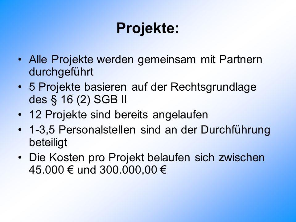 Projekte: Alle Projekte werden gemeinsam mit Partnern durchgeführt
