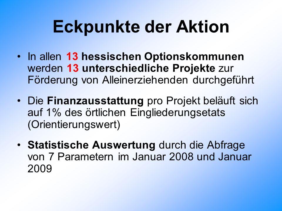 Eckpunkte der Aktion In allen 13 hessischen Optionskommunen werden 13 unterschiedliche Projekte zur Förderung von Alleinerziehenden durchgeführt.