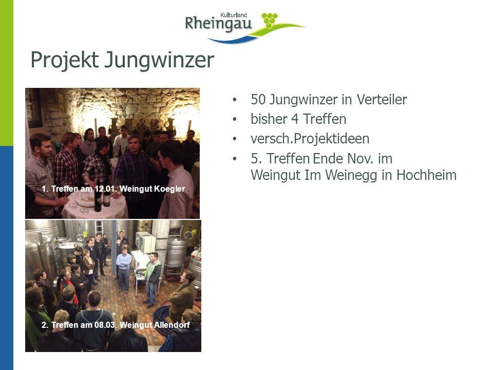 Projekt Jungwinzer 50 Jungwinzer in Verteiler bisher 4 Treffen