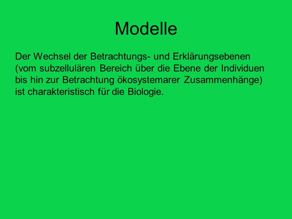 Modelle Der Wechsel der Betrachtungs- und Erklärungsebenen