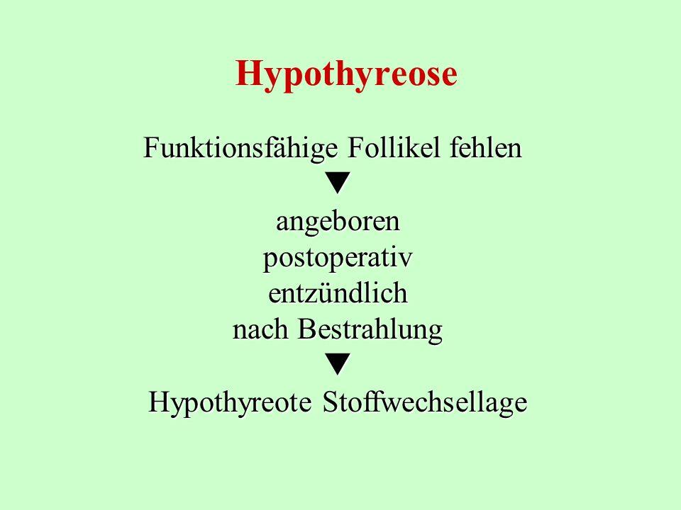 Hypothyreose Funktionsfähige Follikel fehlen  angeboren postoperativ