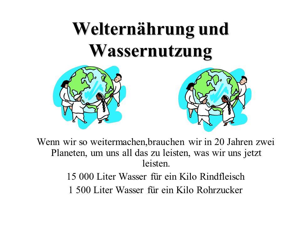 Welternährung und Wassernutzung