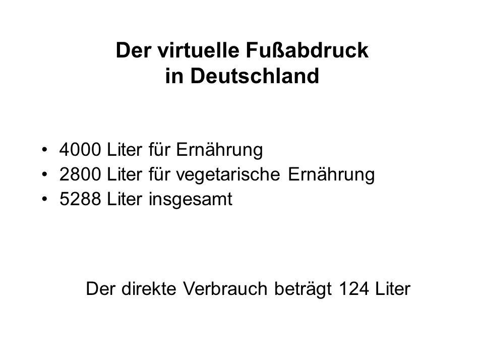 Der virtuelle Fußabdruck in Deutschland