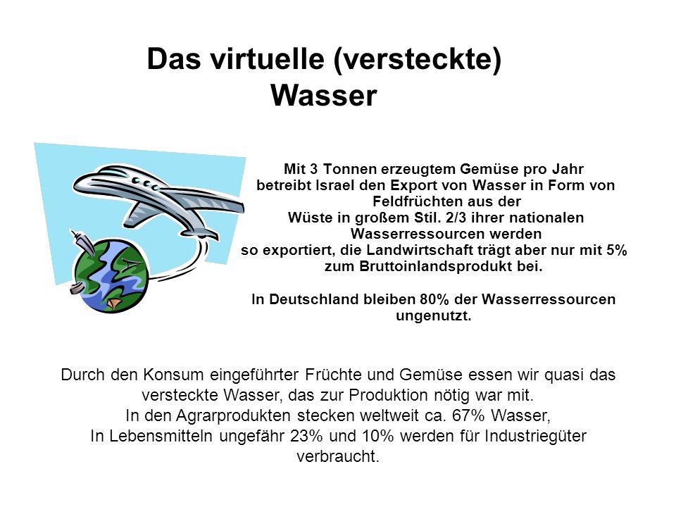 Das virtuelle (versteckte) Wasser