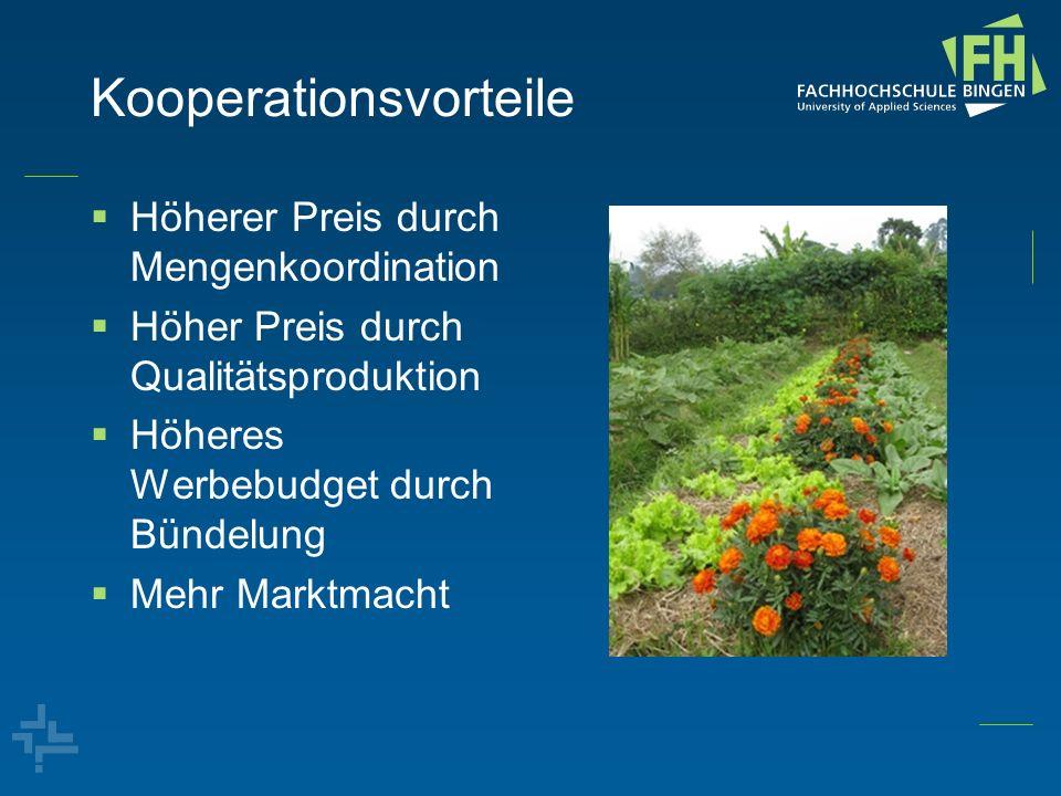 Kooperationsvorteile