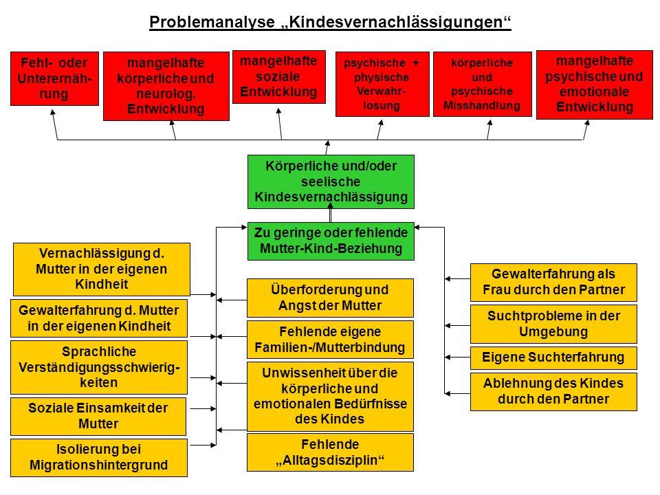 """Problemanalyse """"Kindesvernachlässigungen"""