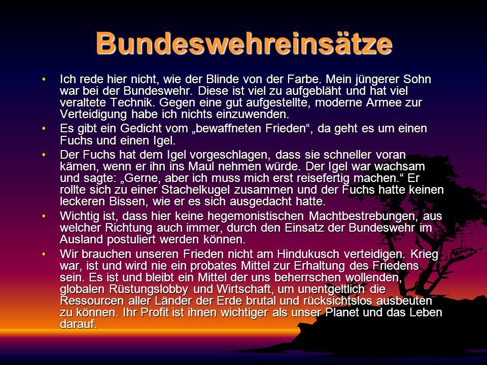 Bundeswehreinsätze