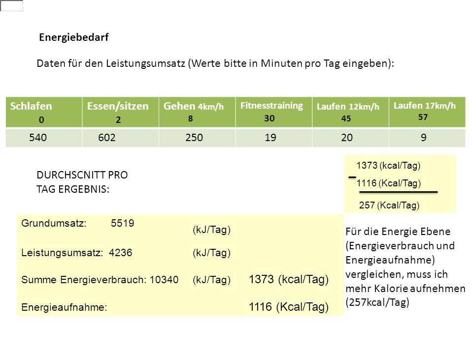 DURCHSCNITT PRO TAG ERGEBNIS: 1373 (kcal/Tag)