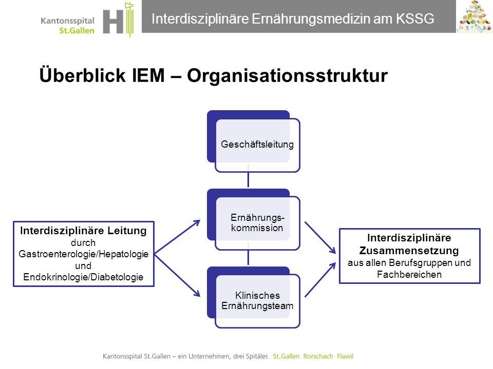 Überblick IEM – Organisationsstruktur