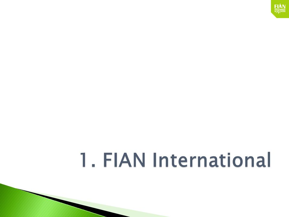 1. FIAN International