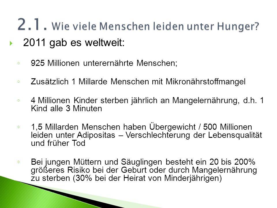 2.1. Wie viele Menschen leiden unter Hunger