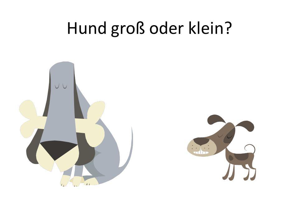 Hund groß oder klein
