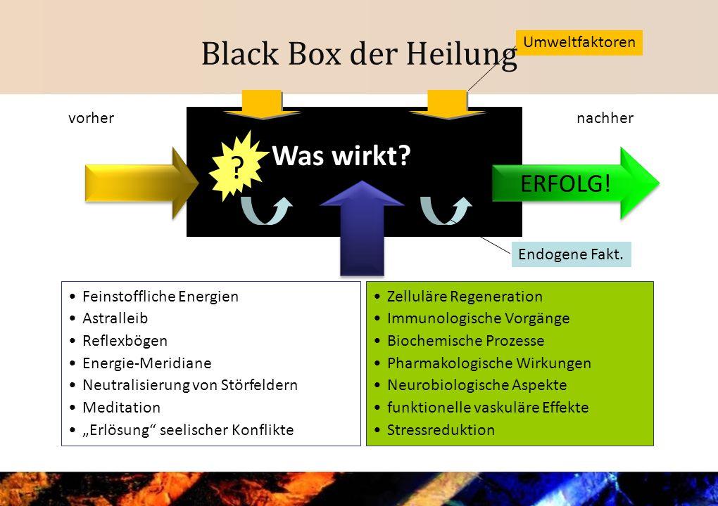 Black Box der Heilung Was wirkt ERFOLG! Umweltfaktoren vorher