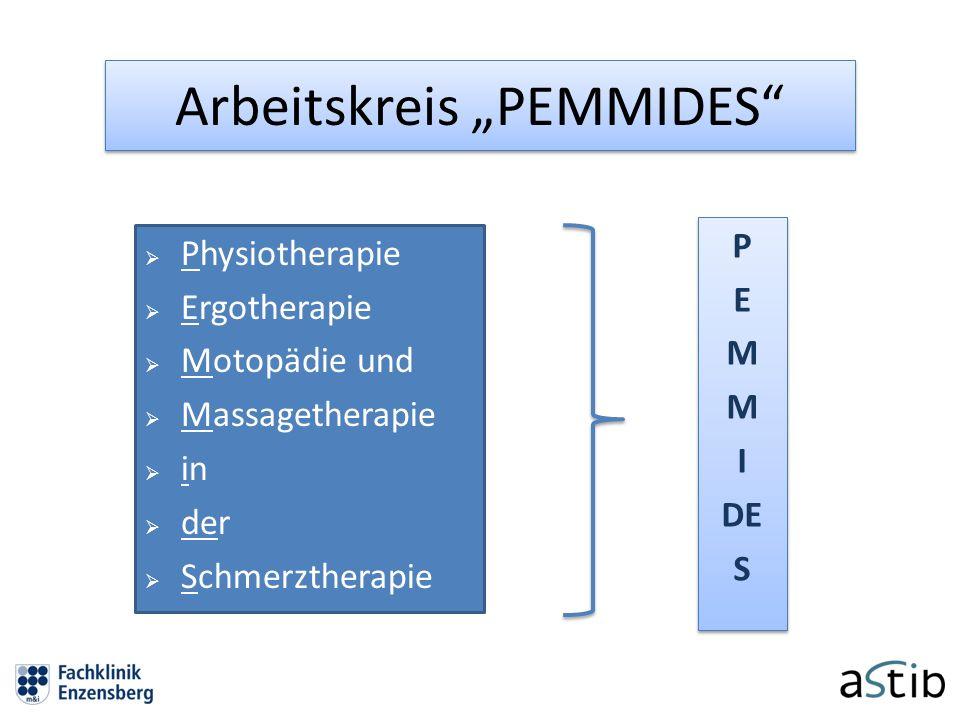 """Arbeitskreis """"PEMMIDES"""