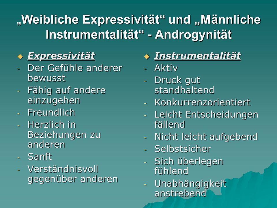 """""""Weibliche Expressivität und """"Männliche Instrumentalität - Androgynität"""