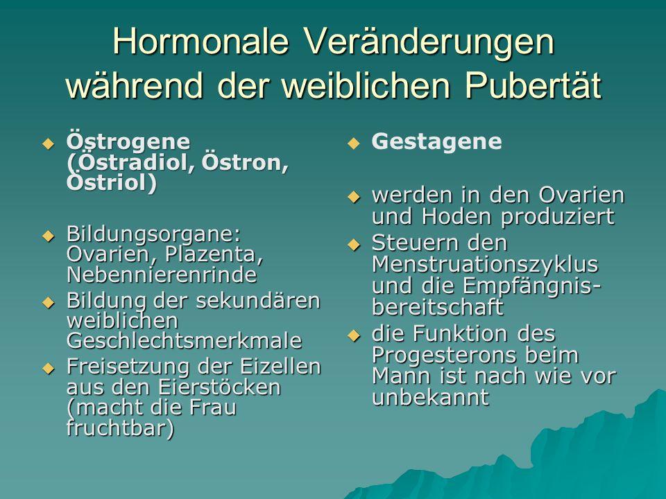 Hormonale Veränderungen während der weiblichen Pubertät
