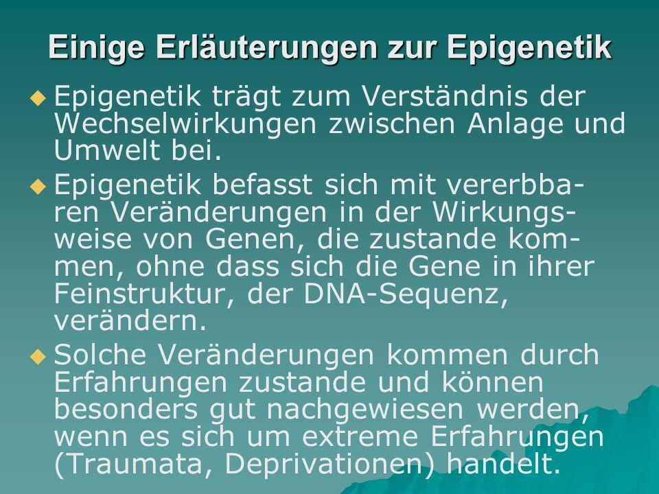 Einige Erläuterungen zur Epigenetik