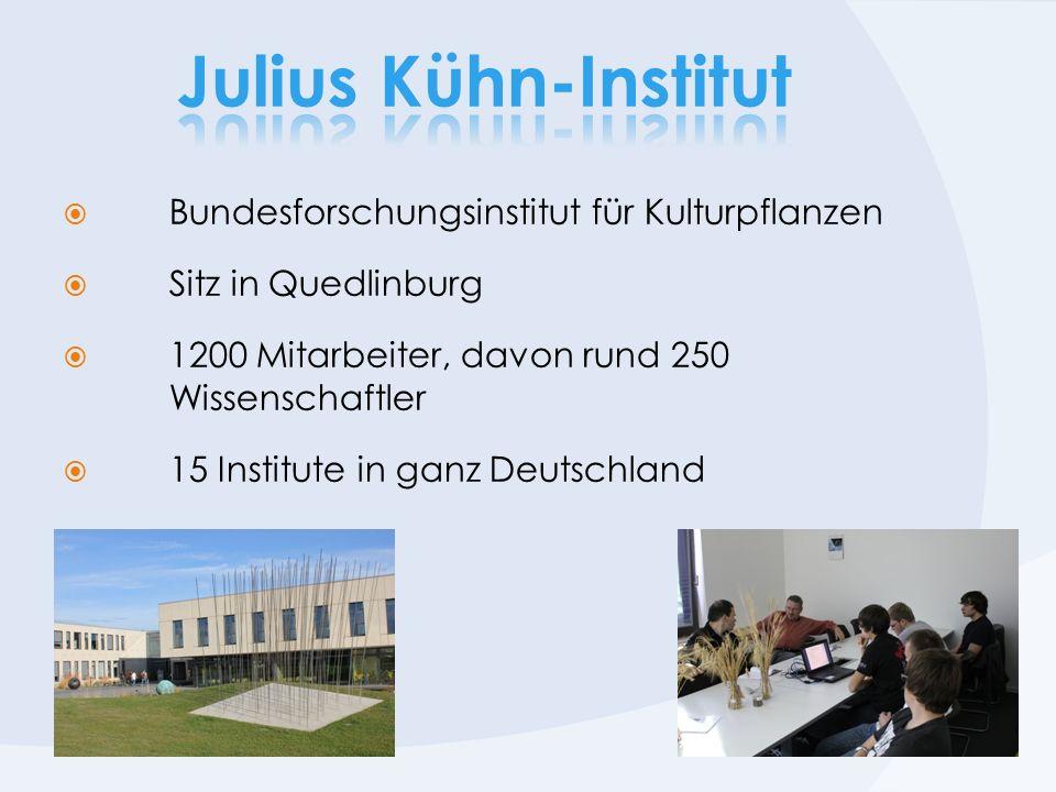 Julius Kühn-Institut Bundesforschungsinstitut für Kulturpflanzen