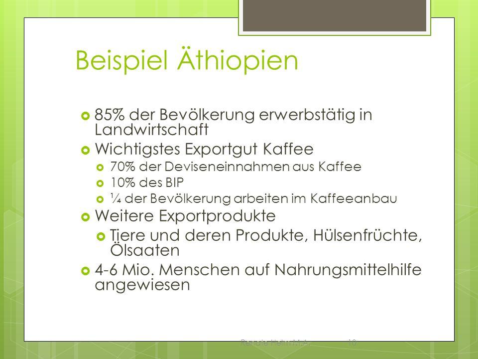 Beispiel Äthiopien 85% der Bevölkerung erwerbstätig in Landwirtschaft