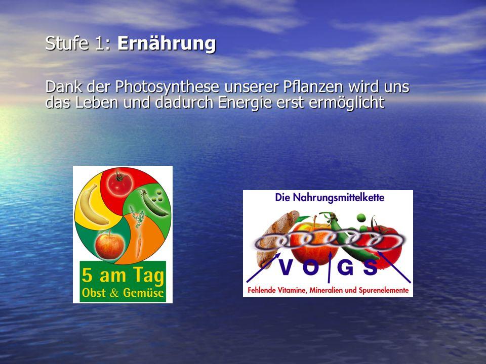 Stufe 1: Ernährung Dank der Photosynthese unserer Pflanzen wird uns das Leben und dadurch Energie erst ermöglicht.