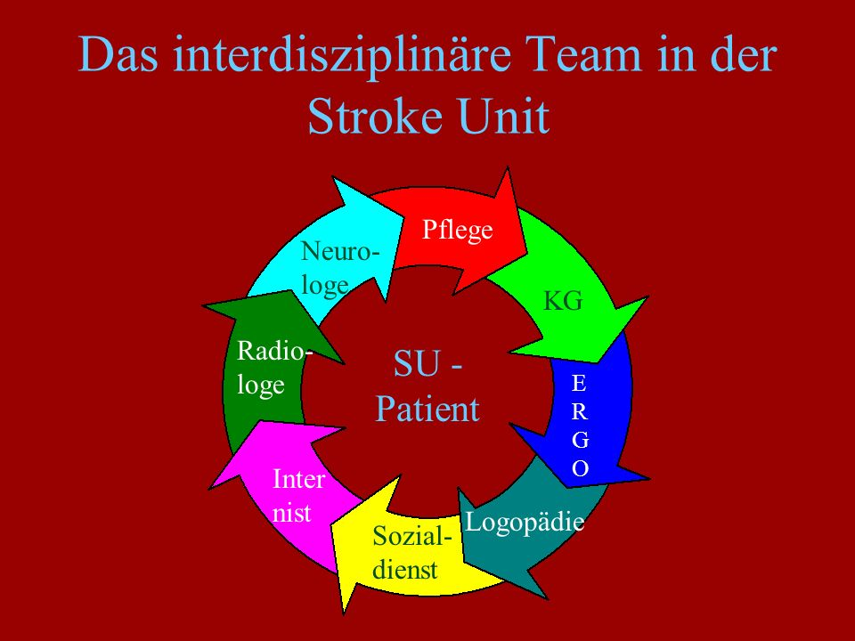 Das interdisziplinäre Team in der Stroke Unit