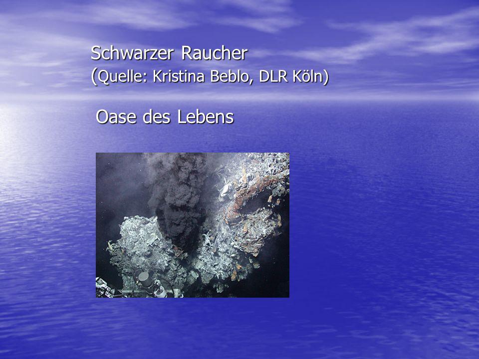 Schwarzer Raucher (Quelle: Kristina Beblo, DLR Köln) Oase des Lebens