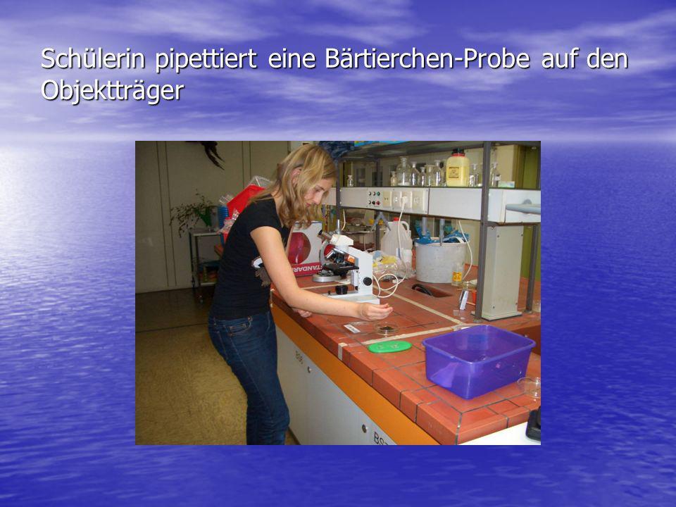 Schülerin pipettiert eine Bärtierchen-Probe auf den Objektträger