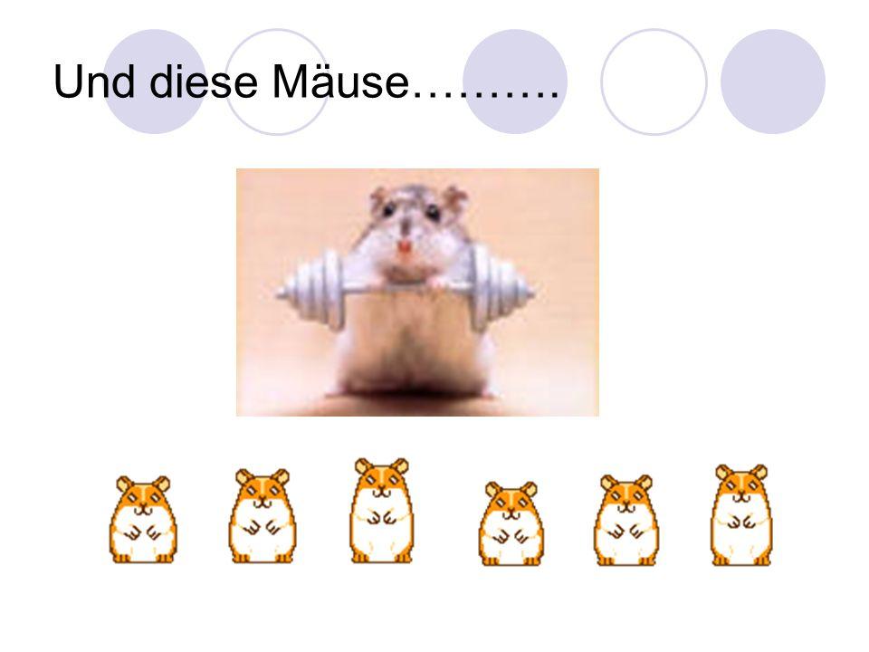 Und diese Mäuse……….