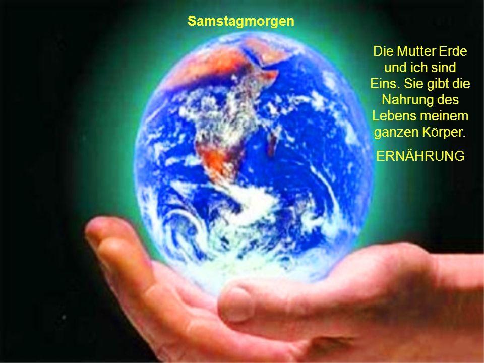 Samstagmorgen Die Mutter Erde und ich sind Eins. Sie gibt die Nahrung des Lebens meinem ganzen Körper.