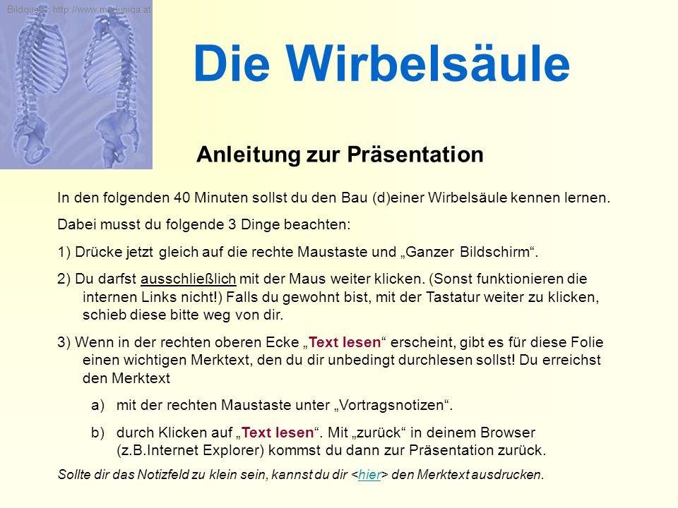 Die Wirbelsäule Anleitung zur Präsentation