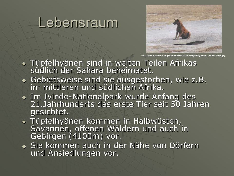 Lebensraum http://de.academic.ru/pictures/dewiki/84/Tuepfelhyaene_neben_bau.jpg.