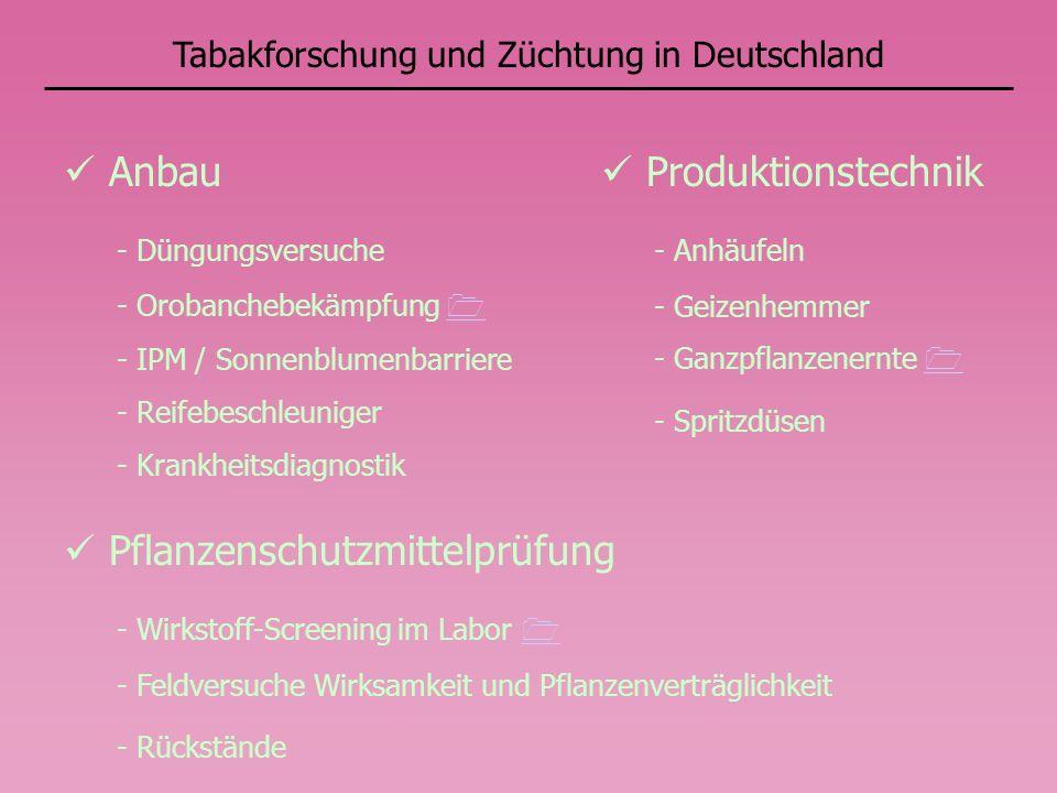 Tabakforschung und Züchtung in Deutschland