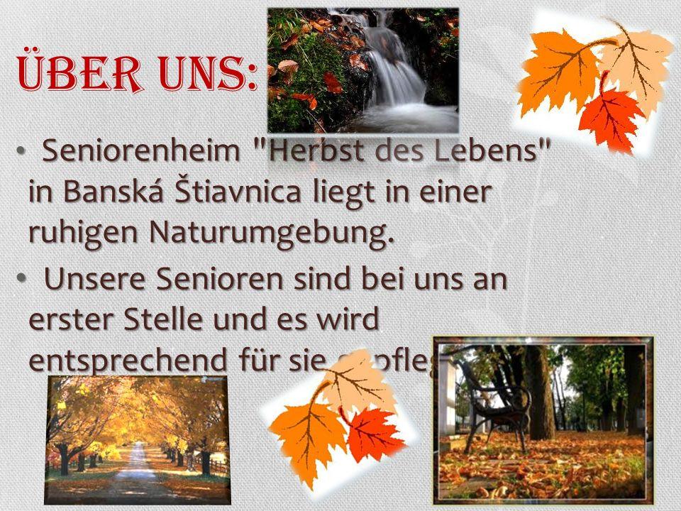 Seniorenheim Herbst des Lebens in Banská Štiavnica liegt in einer ruhigen Naturumgebung.