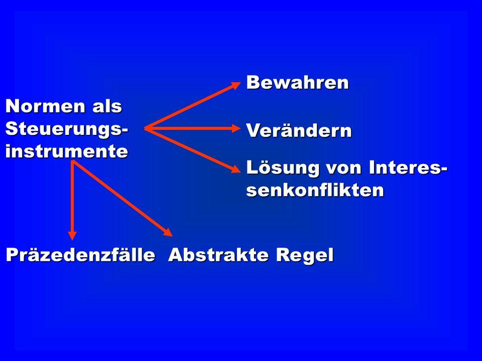 Bewahren Normen als. Steuerungs- instrumente. Verändern. Lösung von Interes- senkonflikten. Präzedenzfälle.