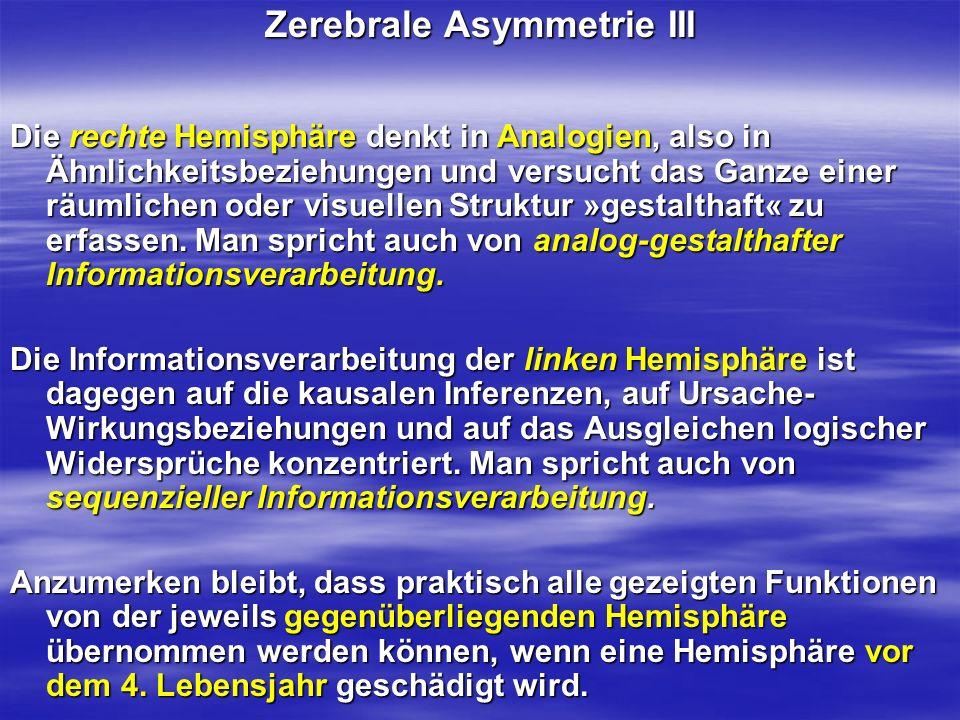 Zerebrale Asymmetrie III